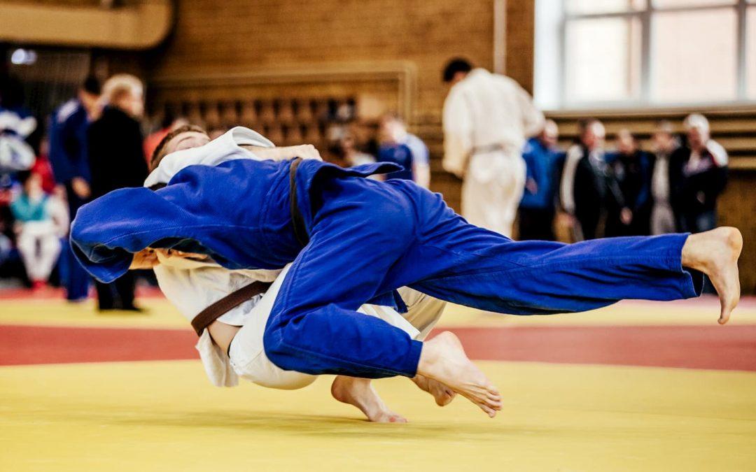 Quelles sont les principales différences entre l'Aïkido et le Jujitsu ?